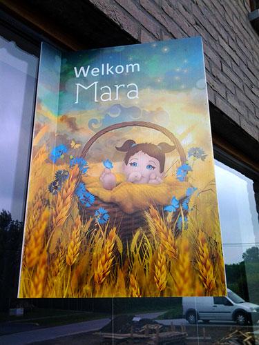 raambord01-mara-simon-geboortekaartje-zomer-koren-geel-mandje-bloemen-by-xantifee