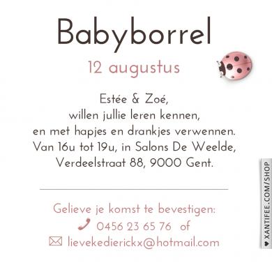 babyborrel uitnodiging - melkflesjes - broer of zus in de deuropening.