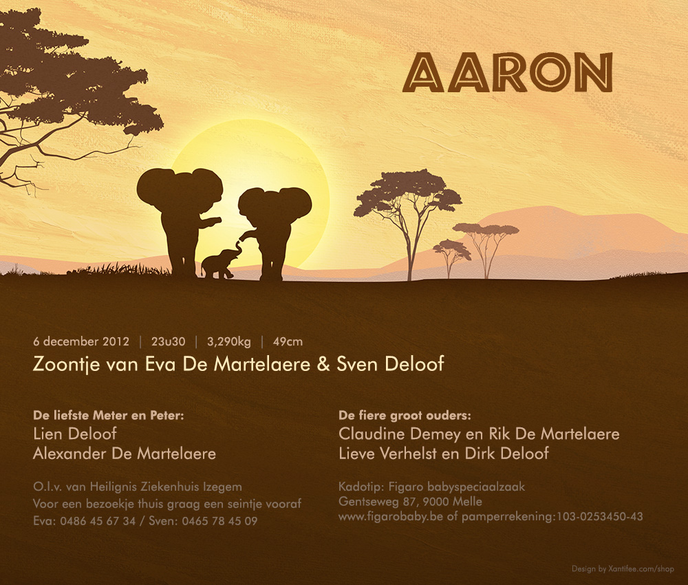 Afrika digitaal kaartje - familie olifanten en opgaande zon in de savanne.