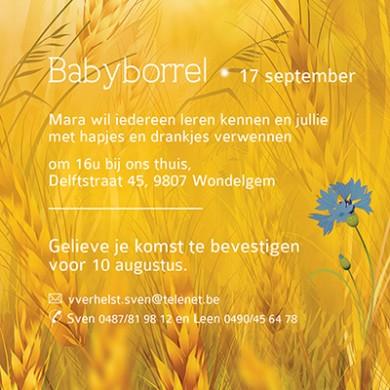 Babyborrel uitnodiging zomer: koren, bloemen en het kindje in een mandje.