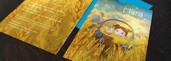 Geboortekaartje zomer: koren, bloemen en het kindje in een mandje.