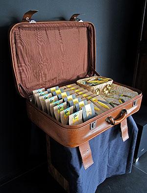 doopsuiker opstelling geboorte koffer compas chocolade smarties zakjes geboortekaartje vogel zwaluw zomer reizen wereldkaart xantifee